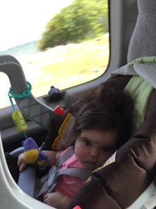 Allie on the drive through Kingston from the airport to our apartment. At this point she was ready to be out of her seat