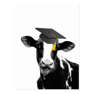 congratulations_graduation_funny_cow_in_cap_postcard-ree1d4e66c4d34438a2f6e50f52a99c86_vgbaq_8byvr_324-2.jpg